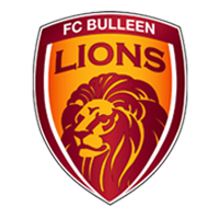 Fc-Bulleen-Lions.png